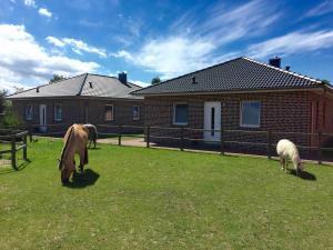 Die Hofwiese auf dem Ferienhof Claussen