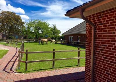 Pferde direkt an den Unterkünften