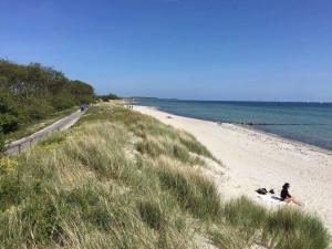 Der Südstrand von Fehmarn im Sommer, ein Fahrradweg.
